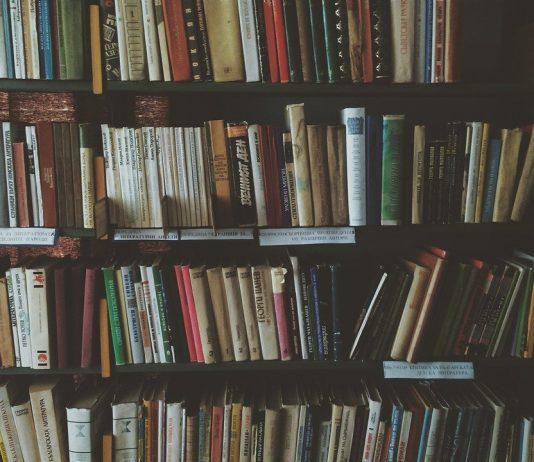 Владислав Толстов // Восемь книг о книгах, писателях и читателях