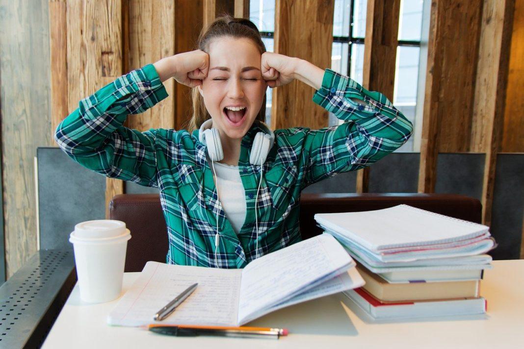 ЕГЭ по литературе. Как устроен экзамен?