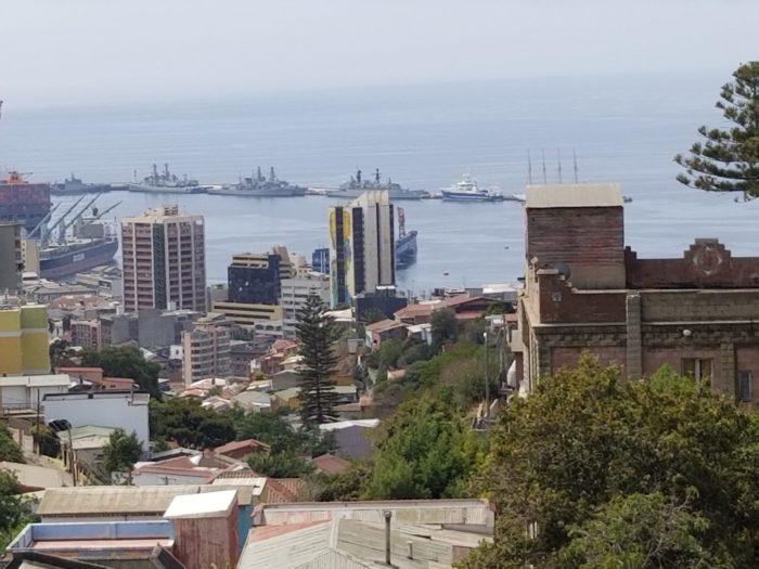 Араукария и порт Вальпараисо. Фото Галины Ицкович // Формаслов