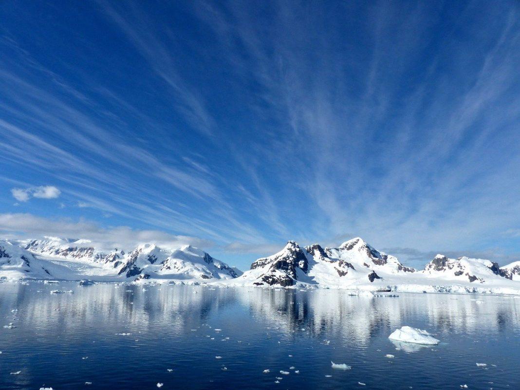 Арктические льды // Формаслов