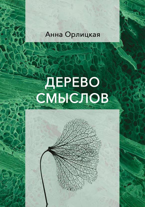 Анна Орлицкая «Дерево смыслов» // Формаслов